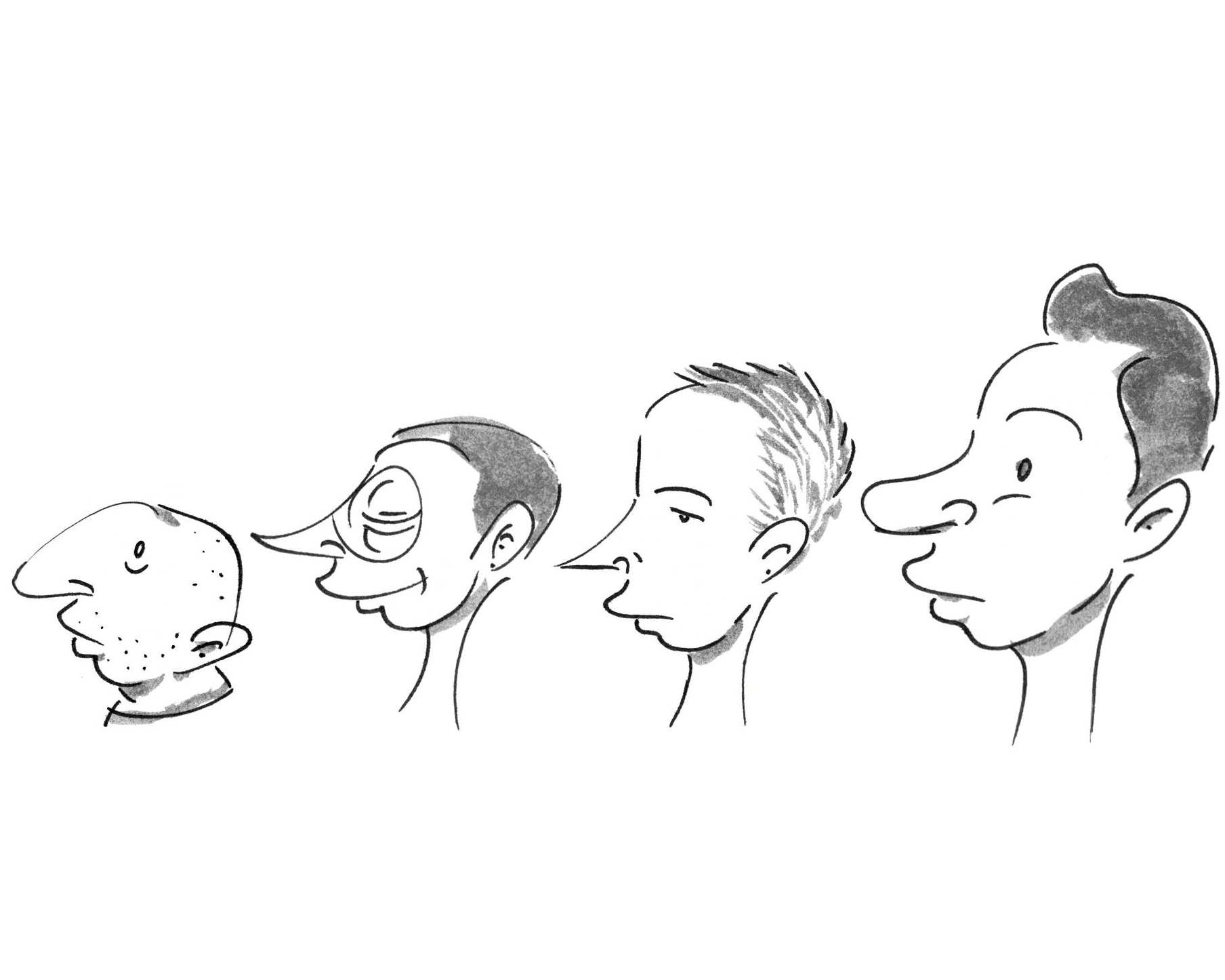 Four profiles