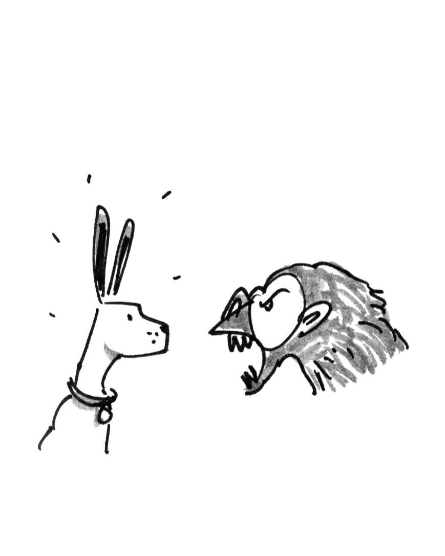 Dog and ape